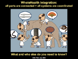 WholeHealth Elephant